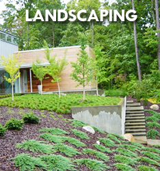 Landscape Design Raleigh NC