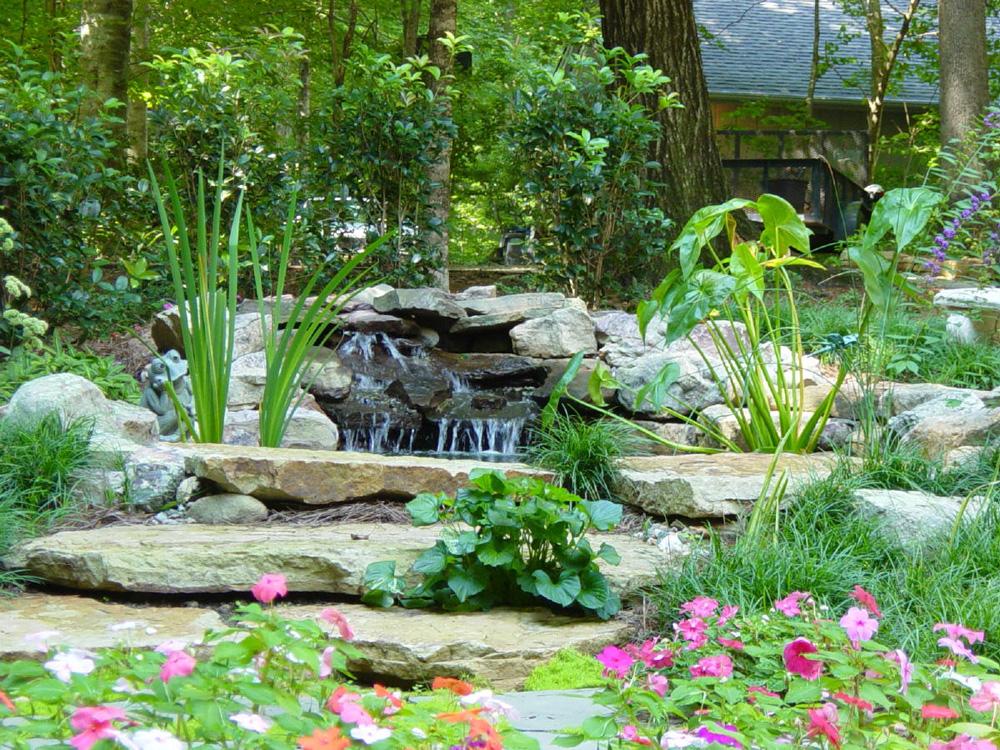 Water gardens portfolio for Natural garden pond design